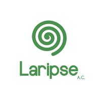 Laripse