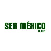 Logotipo sermexico cuadro